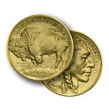 1 Ounce American Buffalo Gold Coin Mixed Years (999.9)